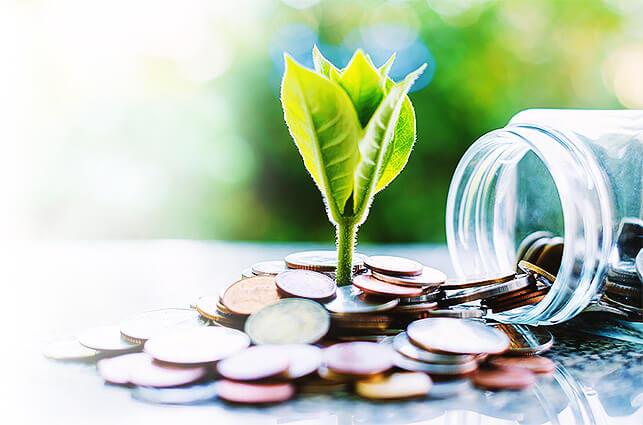 Accounts outsource UAE