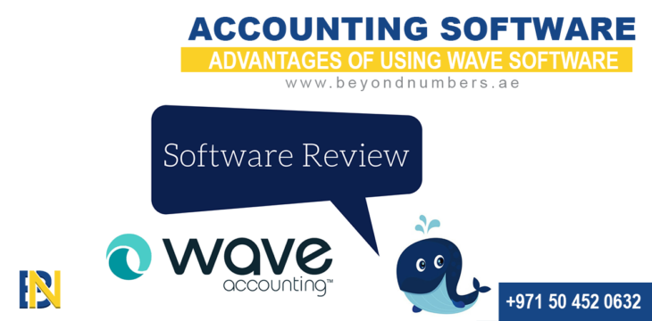 Advantages of using WAVE as accounting Software